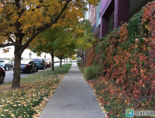 Walking in Denver Part 1: Whose Sidewalk Is It Anyway?